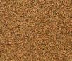 ZS1903