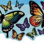 butterflyskidiecut.pdf